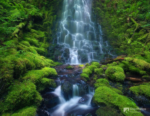 Fairytail Falls, Columbia Gorge by Chip Phillips on Flickr.