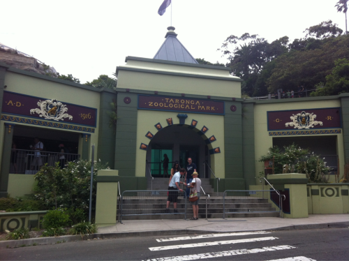 We had a great time at the Taronga Zoo.