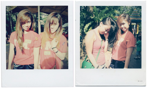 Pseudo polaroids & inside jokes at the Manila Zoo