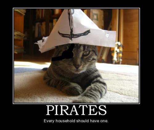 Save the internet. #SOPA #PIPA #Kitteh #Pirates