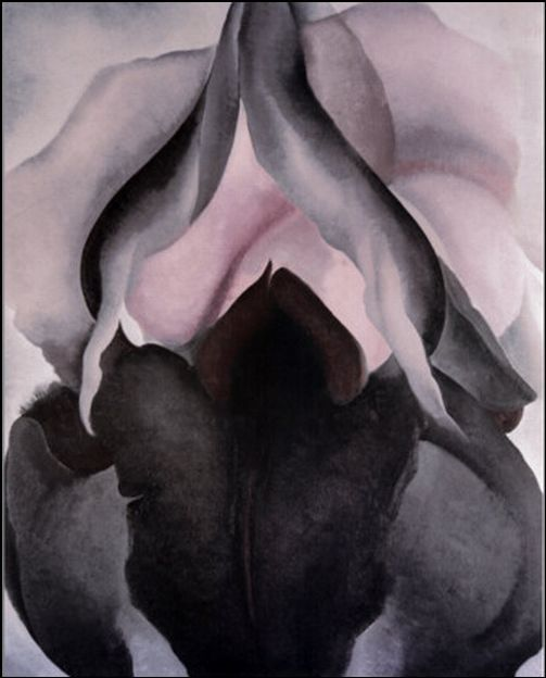 Georgia O'Keeffe Black Iris  Black Iris, 1926 This monumental flower painting is one of O'Keeffe's masterpieces. Using  colors that are subtly graded from impenetrable black-purple and deep  maroon to soft pinks, grays, and whites, she captures the ephemeral  quality of this springtime bloom. By enlarging the petals to  over-lifesize proportions, O'Keeffe forces the viewer to confront what  might otherwise be overlooked and, in turn, elevates the ordinary to the  extraordinary. When her magnified flowers were first shown in 1924,  even Stieglitz was shocked by their audacity. Critics saw sexual content  in their delicate contours, organic forms, and lush surfaces, even  though the artist always denied such associations. http://www.metmuseum.org/toah/works-of-art/69.278.1