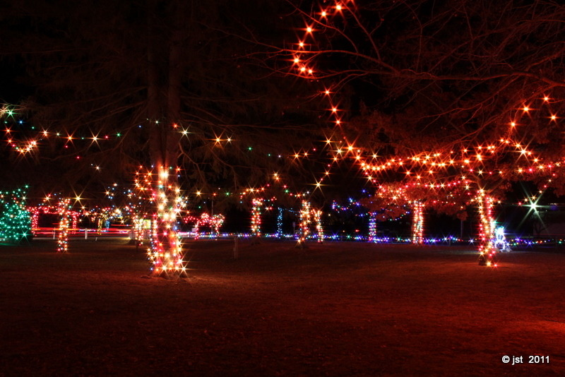 December 29, 2011 Day 361 Irvine Park Lights in Chippewa Falls, WI.