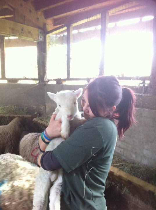 kanyenorthwest:  Aw I pulled this lamb out of his mother the night before. aw look at me being good at my job aw  Totally!