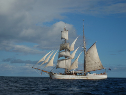 Tall Ship Soren Larsen Sailing Around Vava'u, Tonga, July 2011, If you look closely you can see a crew member a top the Foremast keeping an eye out for Humpback Whales which come to Tonga to have their young. Picture Taken by Marsha Book
