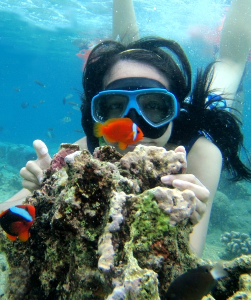 I want to go back to Bohol!I already miss the coral reefs near Alona Beach :)