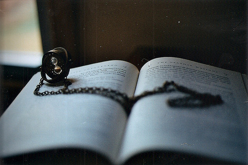 prettybooks:  (by voldy92)