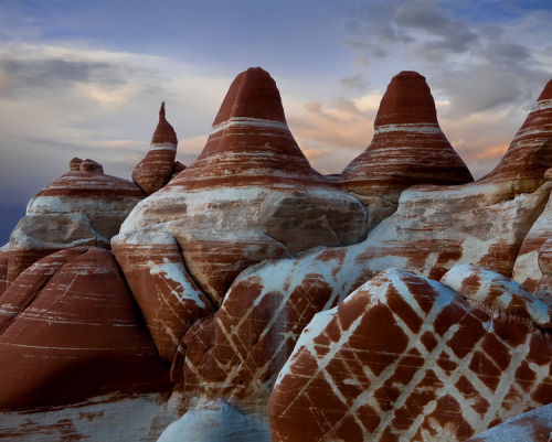 miss-mary-quite-contrary:  Blue Canyon, Arizona