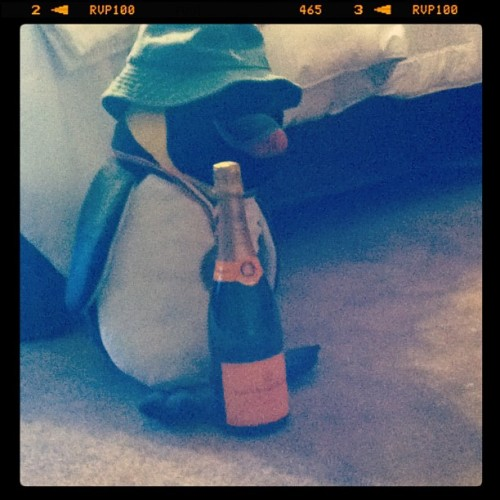 Woke up and there's a penguin in my room… With a bottle of clicquot…I gotta stop drinking B… (Taken with instagram)