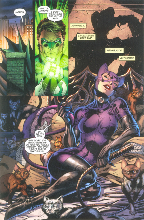 nanigasy:  Jim Lee Catwoman from Batman and Robin All Stars #8 | Comic Book Brain