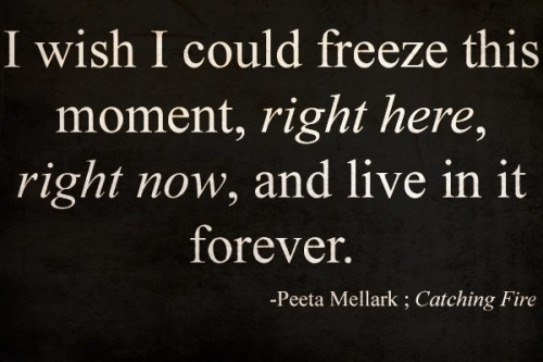 daughterofasmurf:  My Favorite Hunger Games Quote!!!