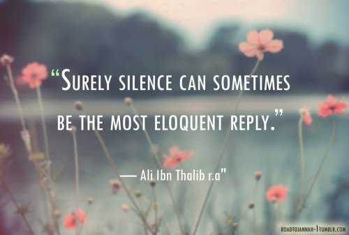 """Surely silence can sometimes be the most eloquent reply."""