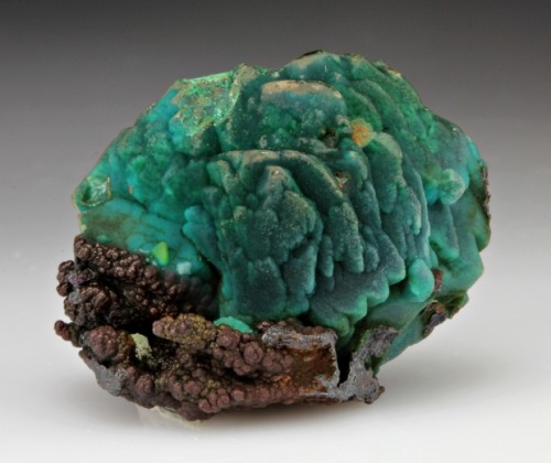 Chrysocolla after Azurite from Australia