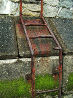 Rust and moss by melcwire on Flickr.