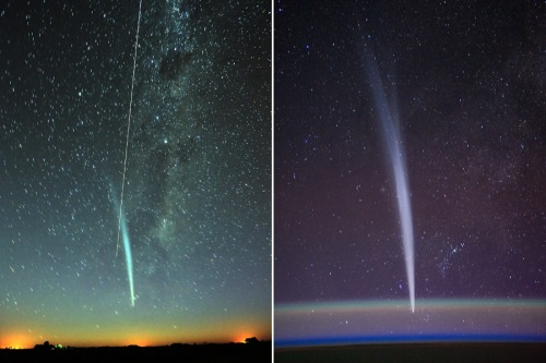 (via APOD: 2011 December 31 - Comet Lovejoy and the ISS) A rather apropos choice for New Year's Eve on APOD today. Comet Lovejoy was a star player (yes, pun completely intended) in this year's sky. I love that the ISS shot shows the two comas of the comet very distinctly. Oh, and that bright streak across the dawn shot from La Pampa province in Argentina? No less than the ISS itself. The two tails are an ion tail (always pointing away from the Sun, pushed out by the stellar winds) and the dust tail (a more curved tail following the orbital trajectory, created as the Sun vaporizes bits of the comet). Image Credit: Carlos Caccia, (Intendente Alvear, Argentina) / Right - Dan Burbank (ISS Expedition 30, NASA)