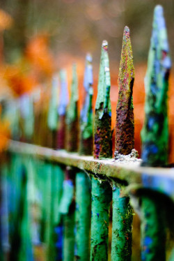 Rusty gate by SurfaceSpotting on Flickr.