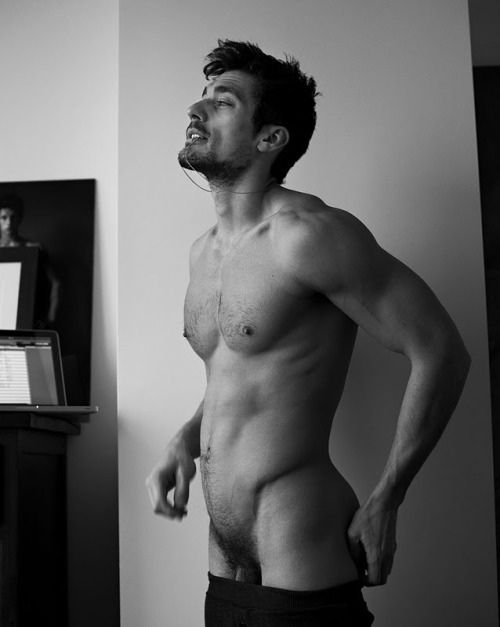 homotography:  Homotography's Top 10 of 2011