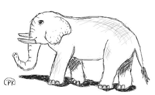 Sketch of an elephant; used my Wacom
