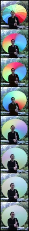 Spinning a rainbow umbrella (full size) Demonstrate the science of colors and light during your rainy day. Or just pretend to be a busy Mac application. $15.99