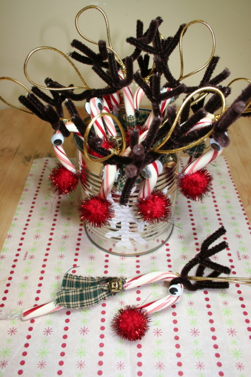 Project: Reindeer Candy Cane Ornaments I remember making these when I was a kid.  These ornaments make such cute gifts and decorations. These reindeers wear scarfs, because they know how cold the North Pole can get. (^_~)b