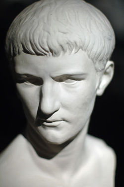 Marble bust of Caligula at the Houston Museum of Natural Science