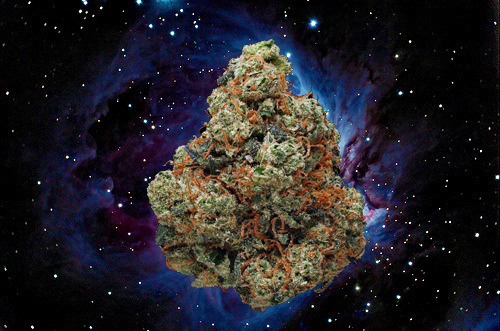 space station marijuana - photo #3
