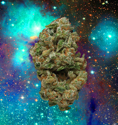 space station marijuana -#main