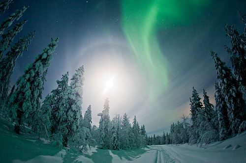 cosmek:  Norther Lights in Finnish Lapland (by Visit Finland)