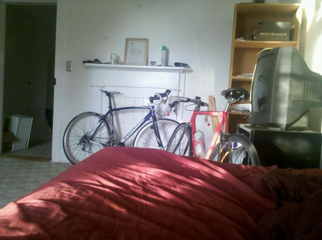 My two babies resting in the house during an Ohio winter, a specialized tarmac elite and steel langster. I am so excited to put countless miles on the tarmac as soon as the weather breaks.