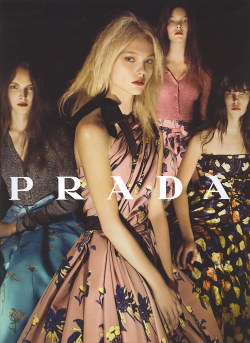prada resort 2008 by steven meisel.