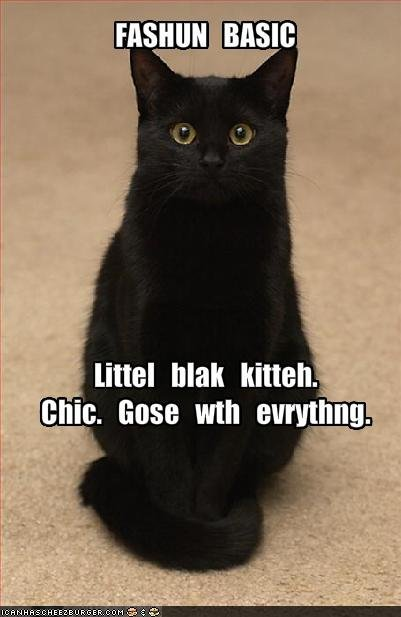 i has a little black kitteh!