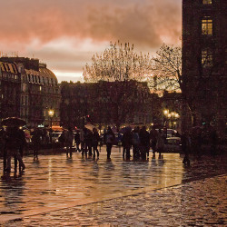 Parvis de Notre Dame at Sunset ~ Rita Crane Photography:  France / Paris / people / rain / reflection / umbrellas / street / building / photography / silhouette / notre dame / sunset  colors by Rita Crane Photography on Flickr.