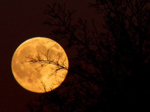 Tonight's Moon by ash2276 on Flickr.