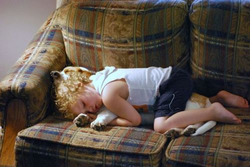 Little kid sleeping on a dog… isn't that just so sweet it makes you sick?