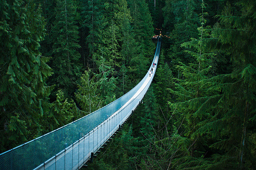 fleeckr:  Capilano Suspension Bridge (by michellerlee)