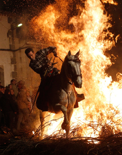 "A man rides his horse through flames during the  ""Luminarias"" religious celebration on the eve of Saint Anthony's Day in  the village of San Bartolome de los Pinares, Spain on January 16, 2011.  According to tradition people from the area ride their horses through  the fire to purify the animals.  (Andrea Comas /Reuters)"