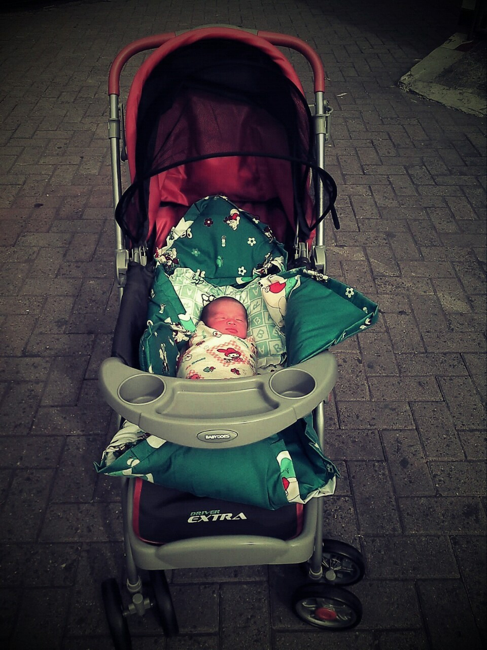Satria in his Cart….. taken 1st Jan 2012