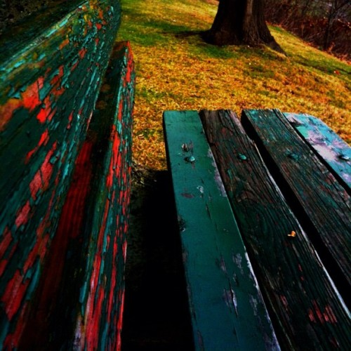 Colorful benches. I know I already posted a snippet of it, but we have cool benches.