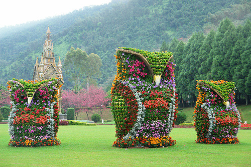 ohmyasian:  2135. Flower Owls. Natural beauty in Nantou County, Taiwan. They be watching you.