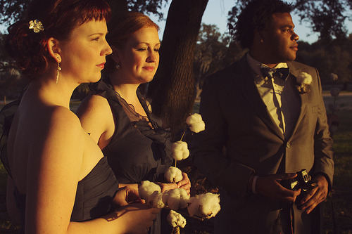 Maids and Groomsman (by Red Headed Rabbit)