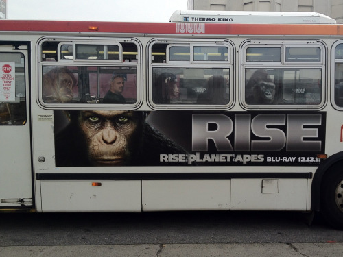 Best bus ad of 2011
