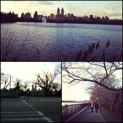 "I took a stroll around Central Park today at sunset and was fortunate enough to get some wonderful lighting on these photos. Here's a mini collage I put together using the app ""DitPic"" - I feel like I'm in 3rd grade putting together art projects and it makes me happy.   -Michael from NY"