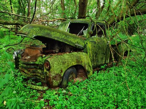 nationalgeographicdaily:  Moss-Covered Truck, MichiganPhoto: Jason Rydquist It's hard to imagine this 1940s Chevrolet pickup moving down the road. Showcasing the ephemeral truth of automobiles, the earth has overtaken it.