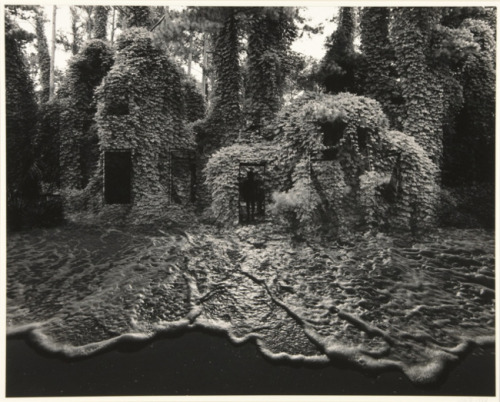 Jerry Uelsmann—Kudzu House with Surf