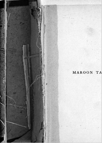 Broken endpaper reveals interior of spine. From Maroon Tales: University of Chicago Stories by Will Cuppy (1909).