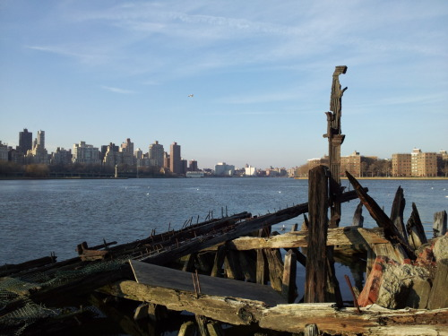 audrey dimola: as it began at sculpture park; long island city, queens. AD's inspiration and reason: i actually took this photo with my smartphone (!) on new year's day. it's funny because this vantage of the east river and the gorgeously dilapidated wooden ruin is also the very first photo on DKADSHOTNY back in feb 2010! it will soon be our two year anniversary.. how much has changed. this vantage, thankfully, is still just as beautiful every time i visit it. i had some much-needed quiet time sitting on some rocks at the shore, just reading and writing and admiring the view. there were so many birds flying around - the tiny flecks of white in the water are actually seagulls! - and the sky was perfectly dusted with fair-weather clouds. no matter where i go, this will always be my favorite place.