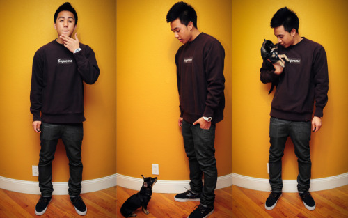 WDYWT - 1/3/12SUPREME x LEVIS x VANS So I was just being my gay self and taking WDYWT pictures and the little slut Olive couldn't leave me alone. I think it's a sign I spoil him too much… haha fuck. But anyways, I treat him like my baby so I don't give a fux. Just ran errands today for the second straight time and now I'm errand free. Woooooooooooo!