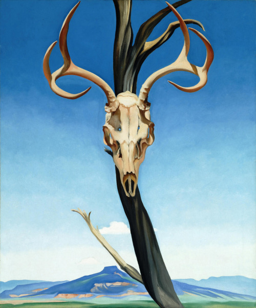 Deer Skull with Pedernal   Georgia O'keeffe