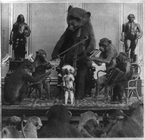 (via vintagephoto: Monkey Band)