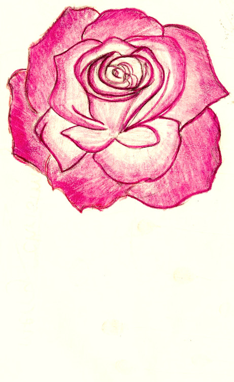 ne-me-quitte-pas-moncher:  Rose by circlesscarvesandsassafras