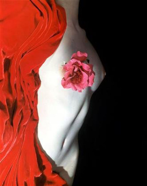 Nude with Camellia, New York, c.1950 by Erwin Blumenfeld from 0rchid_thief